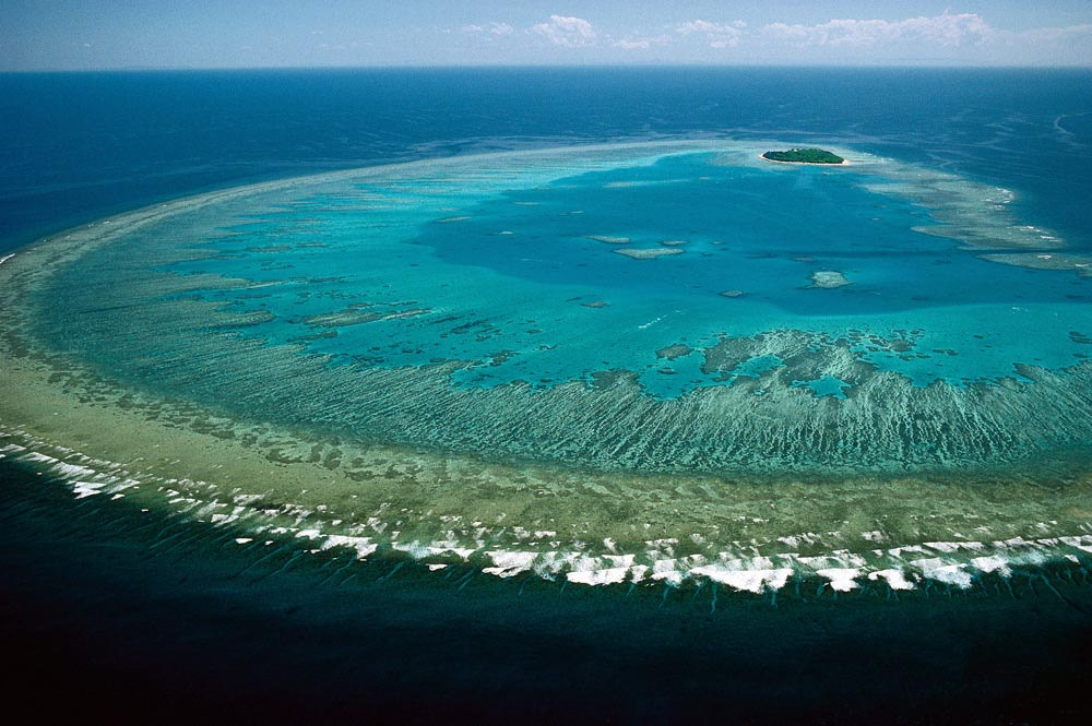 Scientists Warn that Current Efforts Are Not Enough to Save the Great Barrier Reef