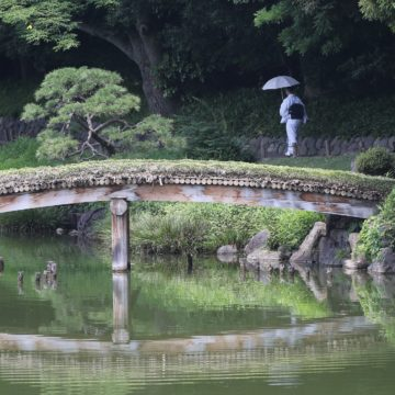 New York Botanical Garden Defines Beauty Of Japanese Hill And Pond