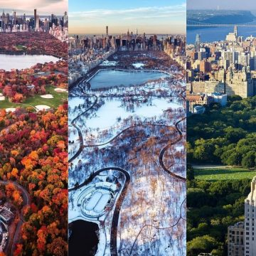 Things to Do in Central Park for Spring, Summer, Fall, and Winter